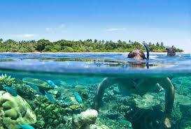 cebaco fishing tuna coast panama