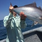 fish still moving panama saltwater fishing