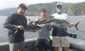 group of guys catches yellowfin tuna while on vacation in panama