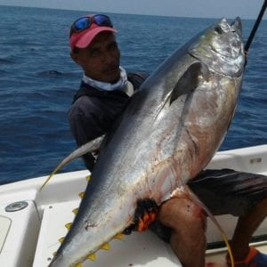 offshore fishing in panama success near famed coiba national park