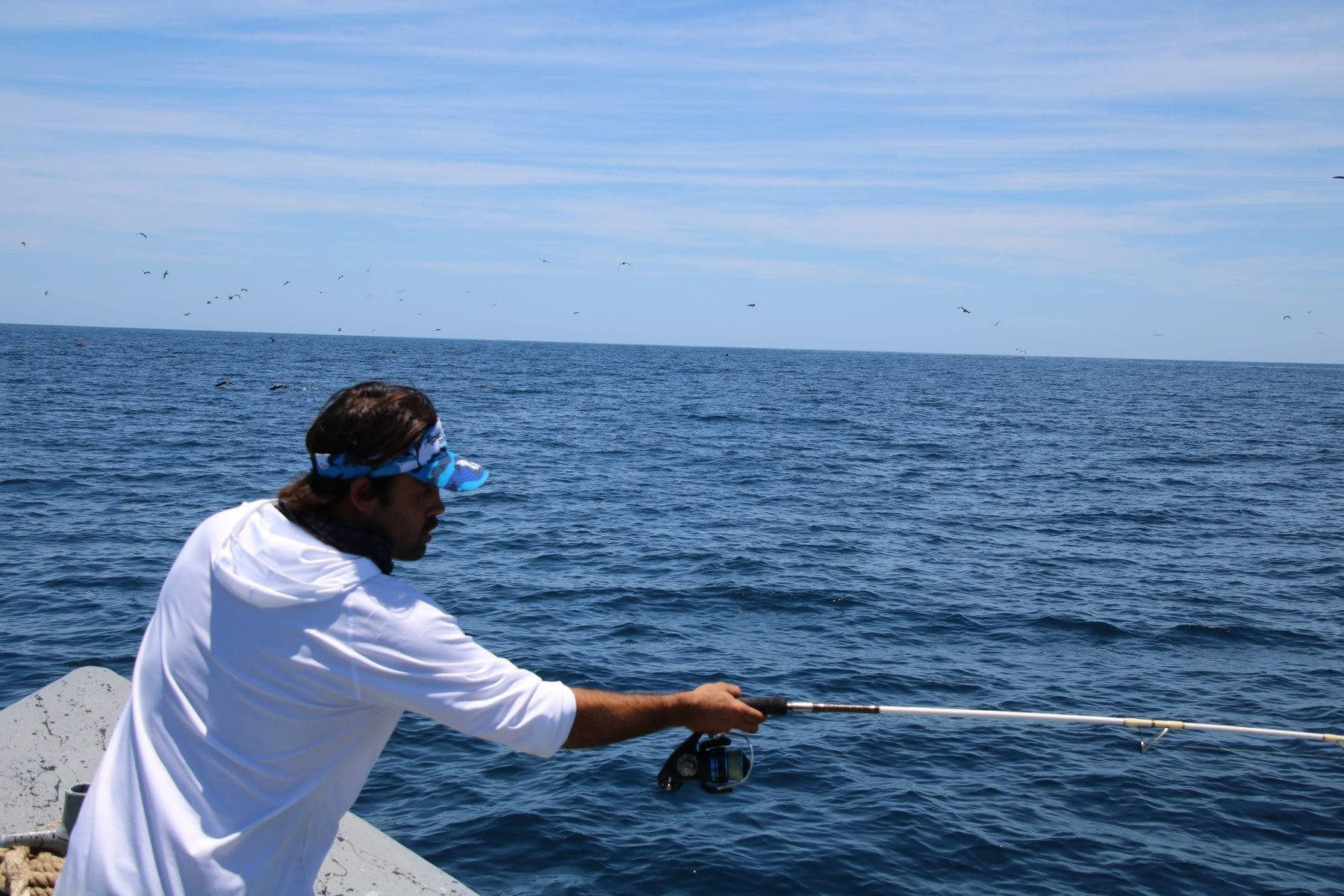 Offshore fishing was very productive our may fishing report for 13 fishing freefall