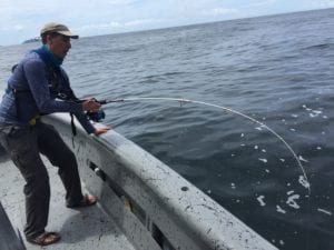 rod bent working hard to bring in huge yellowfin tuna near isla coiba panama