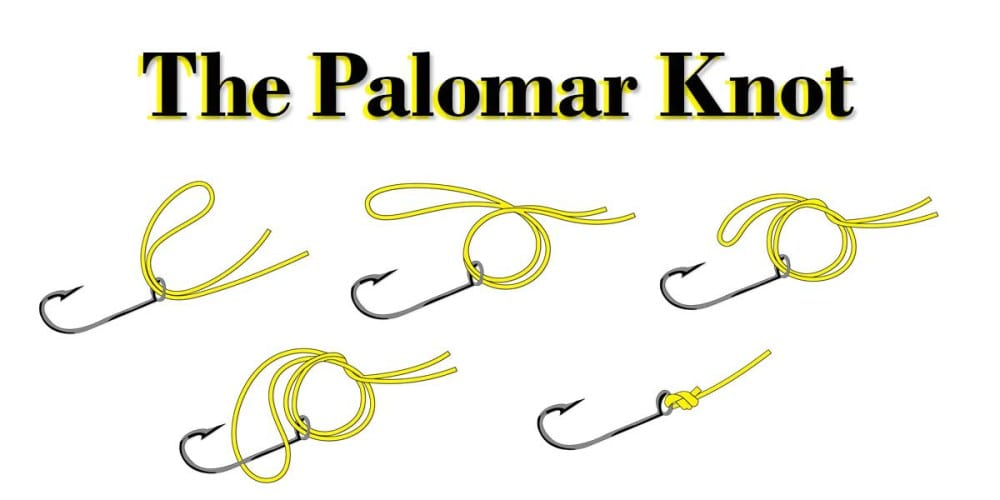 Image result for palomar knot