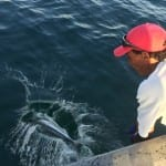 catch and release fishing in panama
