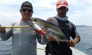 football sized yellow fin tunas all day long while vacationing in panama