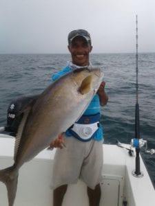 amberjack caught in panama near cebaco island on the tuna coast