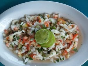 fresh ceviche made from that days catch while at panama fishing lodge